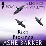 richpickings_thumbnail